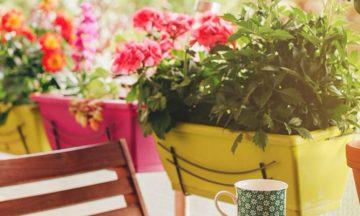 È primavera e vuoi sapere come decorare il tuo balcone? Scopri subito come